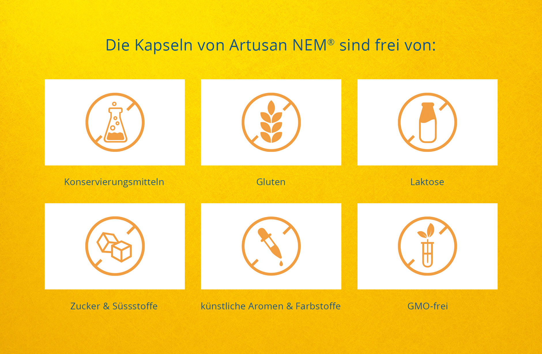 Artusan NEM – Webseite Icons – Newsign Grafik